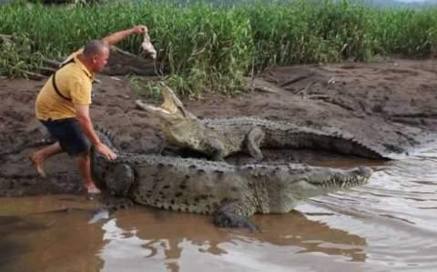 Нехватка адреналина каждый день толкает экскурсовода в пасть к аллигаторам