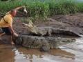 1397533508_thumb_nehvatka-adrenalina-kazhdyiy-den-tolkaet-ekskursovoda-v-past-k-alligatoram_10