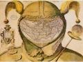 1398879362_thumb_Karta-shutovskogo-kolpaka-odna-iz-samyh-bol-shih-zagadok-kartografii