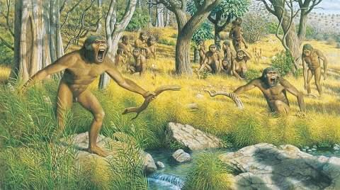 Агогве − африканские лесные человечки