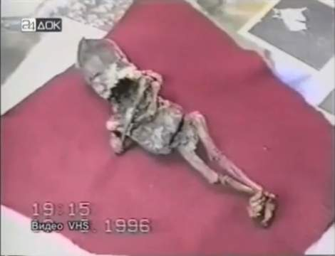 В России и Южной Америке обнаружены почти идентичные тела предполагаемых инопланетян