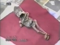 1400738402_V-Rossii-i-Yuzhnoiy-Amerike-obnaruzheny-pochti-identichnye-tela-predpolagaemyh-inoplanetyan_3