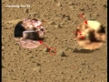 1401279483_Curiosity-2012-Volume-1-My-23-Video-about-Life-on-Mars