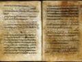 1401898142_drevnie-rukopisi-dokazyvayut-rus-rodina-vampirov_1