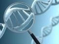 1402391341_lyudi-byli-zaprogrammirovany-na-samounichtozhenie-geneticheski