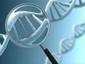 1402391341_thumb_lyudi-byli-zaprogrammirovany-na-samounichtozhenie-geneticheski
