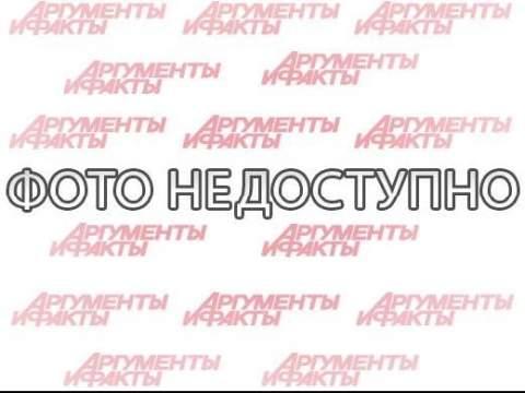 Секретные материалы Анатолия Синицына