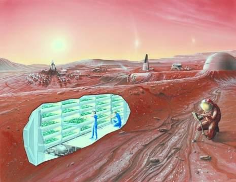 Как же Элон Маск собирается колонизировать Марс?