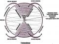 1405355222_drevnie-teorii-ciklov-vremeni-soglasno-fulkanelli-i-andaiyskomu-krestu_3