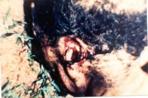 НЛО связаны с жестокими хирургическими операциями над скотом и людьми