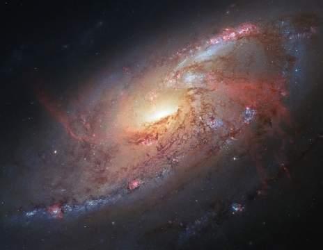Астрофотографический шедевр силами профессионалов и любителей